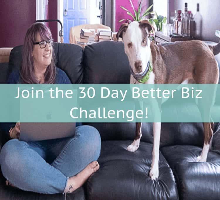 healthy habits every entrepreneur should have 30 Day Better Biz Challenge
